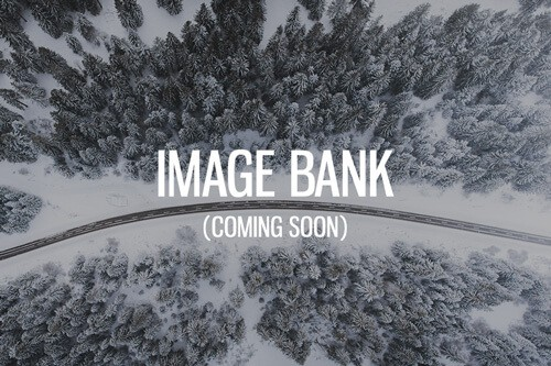 IMAGE-BANK Photo