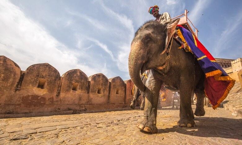 Elephant Riding Jaipur