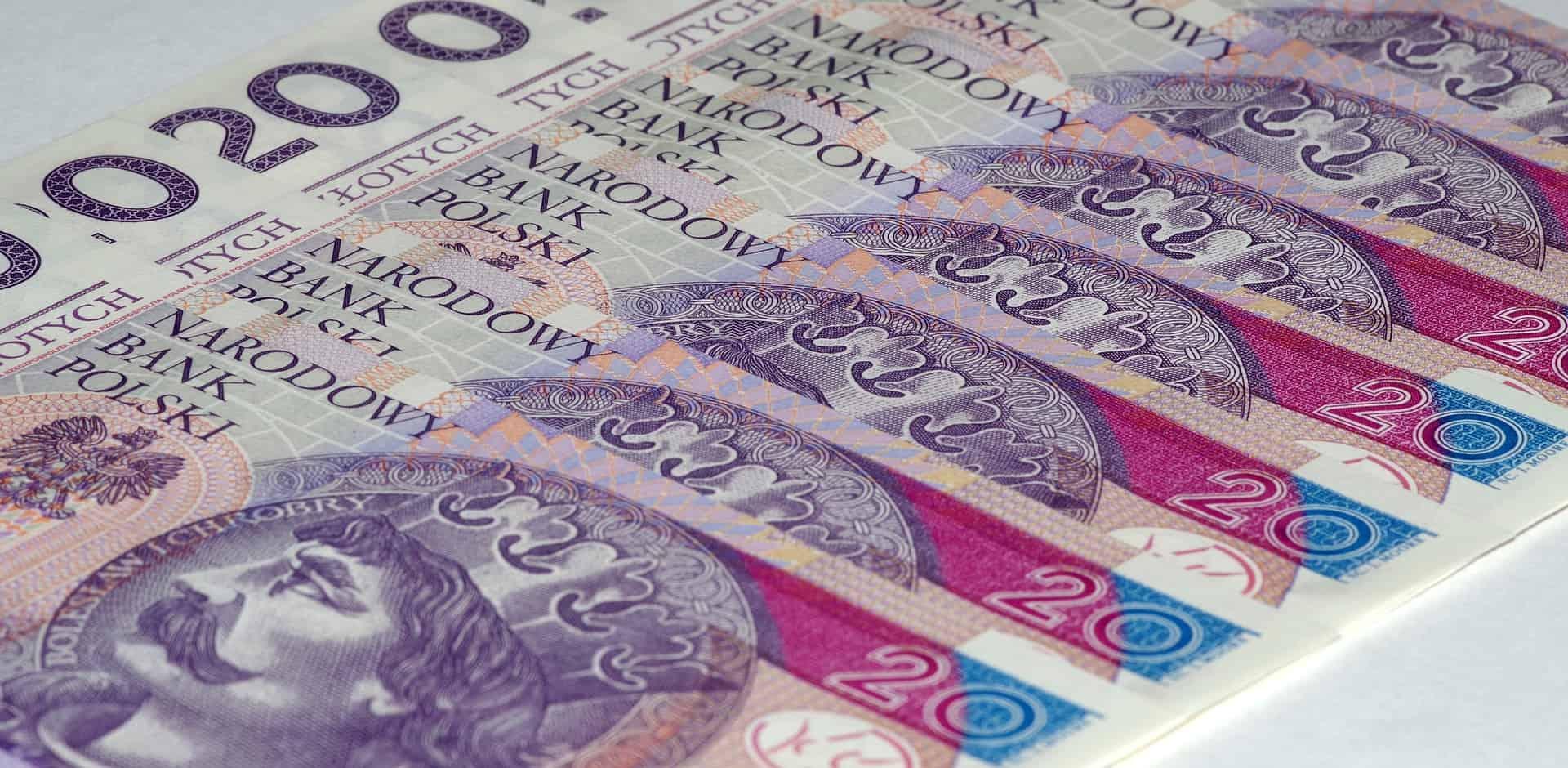 valuta polen euro
