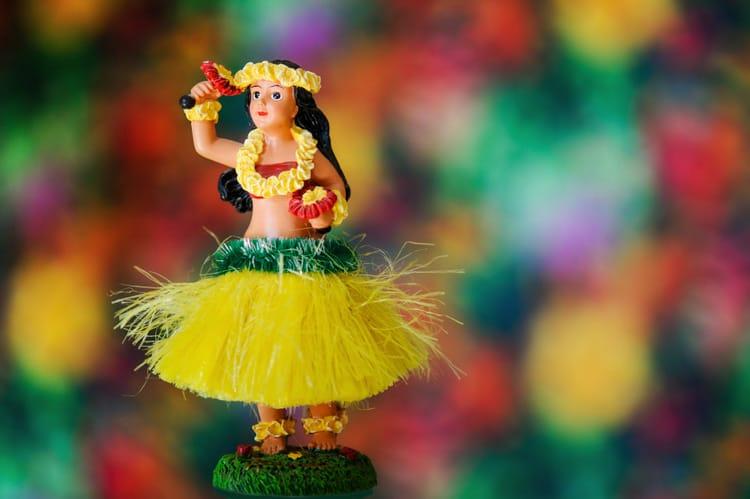 hawaii souvenirs