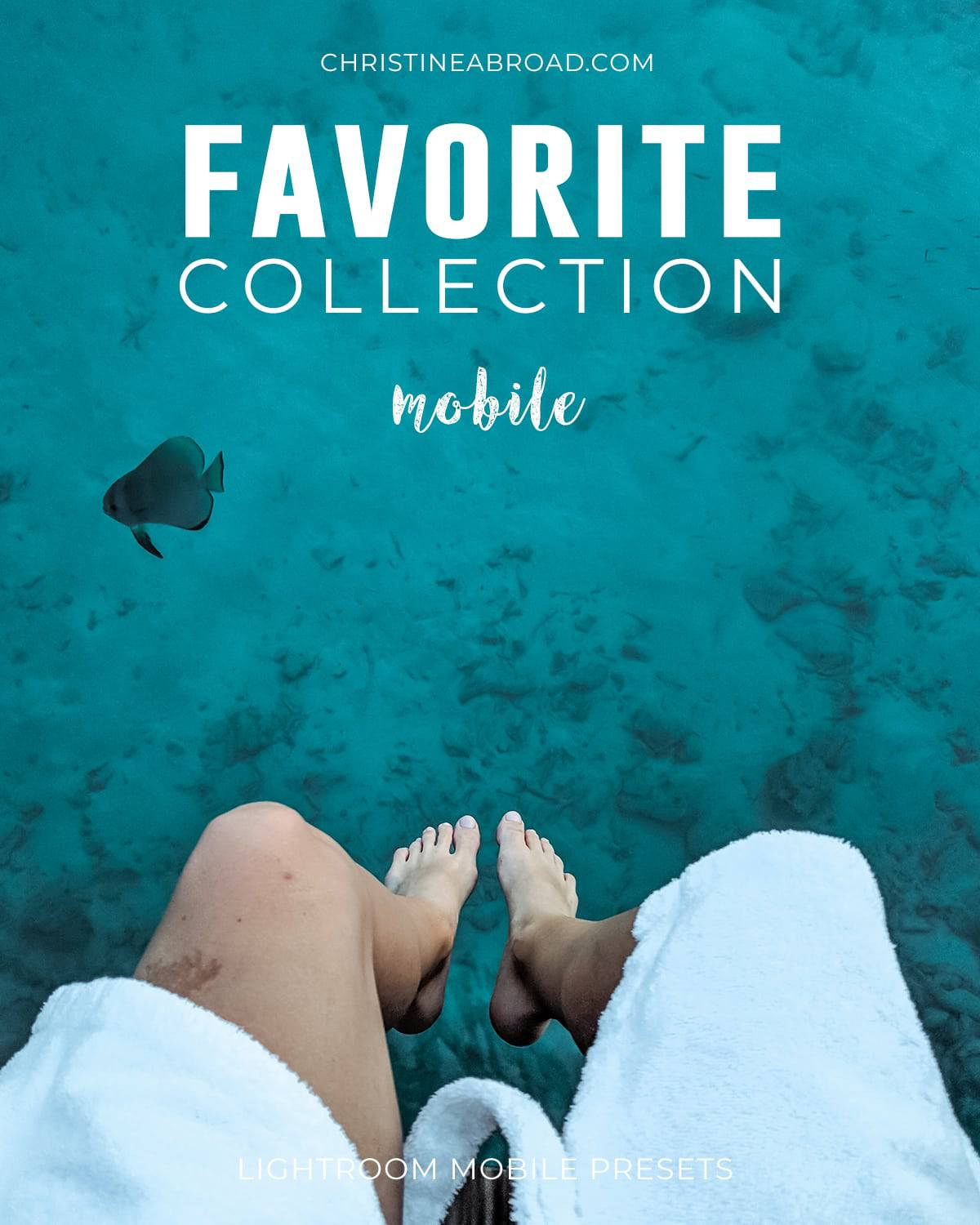 Favorite Collection Mobile - Christine Abroad